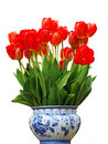 Vase With Red Tulips Royalty Free Stock Photos - 4997468