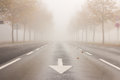 Street With Reduced Visibility Due To Fog Royalty Free Stock Photos - 49932838