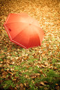 Red Umbrella In Autumn Park On Leaves Carpet. Royalty Free Stock Image - 49970926