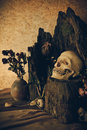Still Life With A Human Skull With Desert Plants, Cactus, Roses Stock Photography - 50064952