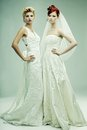 Two Young Brides Royalty Free Stock Images - 50068039