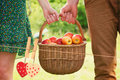 Composite Image Of Basket Of Apples Being Carried By A Young Couple Stock Images - 50128574