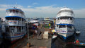 Port In Amazon River Stock Photography - 50226302