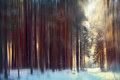 Magical Winter Forest, A Fairy Tale, Royalty Free Stock Images - 50267129