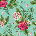 Floral Seamless Pattern Royalty Free Stock Image - 50352356