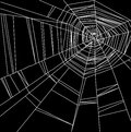 White Spider Web Isolated On The  Black Background Stock Photography - 50382572