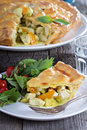 Chicken Curry Savory Pie Royalty Free Stock Photo - 50389415