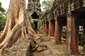 Angkor, Cambodia. Khmer Banteay Kdei Temple Ruins Stock Images - 50414954