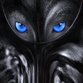 Wolf With Blue Eyes Abstract Illustration Royalty Free Stock Photography - 50422947