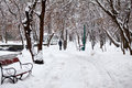 Snowing Landscape In The Park With People Passing By Royalty Free Stock Images - 50439359