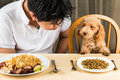 A Teenager With A Poodle Puppy On Dining Table With Plateful Of Food And Kibbles Stock Photo - 50443830