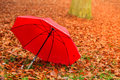 Red Umbrella In Autumn Park On Leaves Carpet. Stock Photos - 50489263