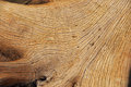 Wood Texture Stock Image - 50497851