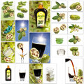 Various Noni Fruit Products, Collage Stock Photo - 50499610