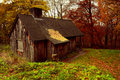 Old Abandoned Cabin In The Woods Of  Ashridge Estate, Hertfordshire, England In Autimn Stock Image - 50577881