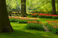 Spring Flowers In Holland Park Royalty Free Stock Photos - 50598868
