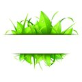 Green Grass And Leaves Banner Royalty Free Stock Photography - 50606297