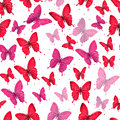 Colorful Butterflies Seamless Pattern Stock Photography - 50617982