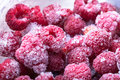 Frozen Raspberries. Shallow Depth Of Field Royalty Free Stock Images - 50617989