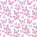 Colorful Butterflies Seamless Pattern Royalty Free Stock Photography - 50618017