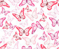 Colorful Butterflies Seamless Pattern Royalty Free Stock Images - 50618439
