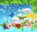 Butterflies In The Spring Flying In The Air Stock Images - 50629464