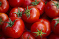 Tomatoes Stock Image - 50631321