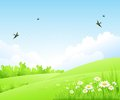 Clean Spring Amazing Scenery. Vector Illustration Royalty Free Stock Photo - 50651135