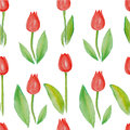 Floral Seamless Pattern Tulips (red Flowers With Green Leafs). Stock Images - 50697684