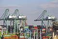 Los Angeles Harbor Shipyard Cranes And Containers Stock Images - 50732274
