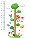 Wall Meter With Three And Wild Animals Cartoon Royalty Free Stock Photography - 50763457
