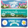 Spring Sale Banners With Tulips And Daisies Royalty Free Stock Images - 50795769