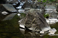 Detail Of Rocks In Water At Black River Gorge Royalty Free Stock Photography - 50829387