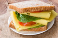 Fresh Made Cheese Sandwich Stock Images - 50852814