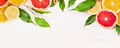 Citrus Fruits Slices With Green Leaves Frame , Banner For Website Royalty Free Stock Photo - 50857675