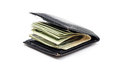 Wallet With Money Royalty Free Stock Photos - 50868458