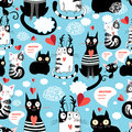 Bright Pattern Cat Lovers Stock Images - 50890304