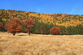 Autumn Landscape Royalty Free Stock Photo - 50904505