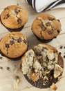 Chocolate Chip Muffins Royalty Free Stock Image - 50918366