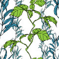 Vector Seamless Pattern With Eucaliptus And Hedera Leaves Stock Image - 50925111