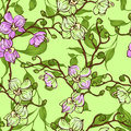 Vector Seamless Pattern With Pink And Green Orchid Flowers Stock Images - 50925294
