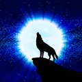 Wolf Howling At The Moon Royalty Free Stock Image - 50927996