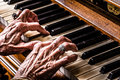 Old Woman Playing The Piano Closeup Royalty Free Stock Photo - 50953185