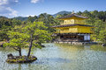 View Of Kinkaku-ji (Temple Of The Golden Pavilion) In Kyoto, Japan Royalty Free Stock Photos - 51003078