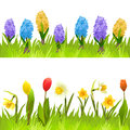 Banners With Spring Flowers, Tulips, Daffodils And Hyacinths Royalty Free Stock Image - 51026546