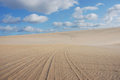 Dunes De Genipabu Royalty Free Stock Photos - 51039488