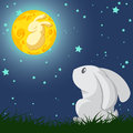 Rabbit And The Moon Stock Photos - 51064033