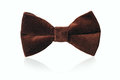 Mans Brown Velvet Bow Tie Royalty Free Stock Image - 51068446
