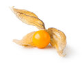 Ripe Physalis Royalty Free Stock Photography - 51099487