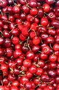 Cherries Royalty Free Stock Images - 5115899